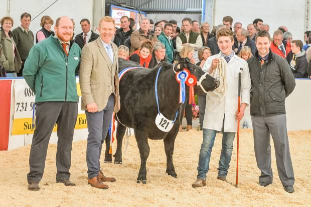 Presentation with Adam Henson Overall Supreme Champion 2015, Sooty, a Limousin Cross Heifer, bred by Bowen and Bowen and owned by Welsh farmers Rhidian and Cai Edwards [T C Edwards & Sons]