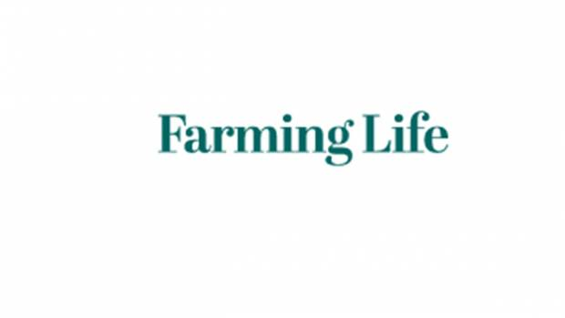 Farming Life - A missed opportunity to support producers - NBA