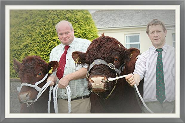 John May, pictured holding his prize winning bull Boskenna Donal, along with Nick Burrington are two of the mainstays of this year's Beef South West Event