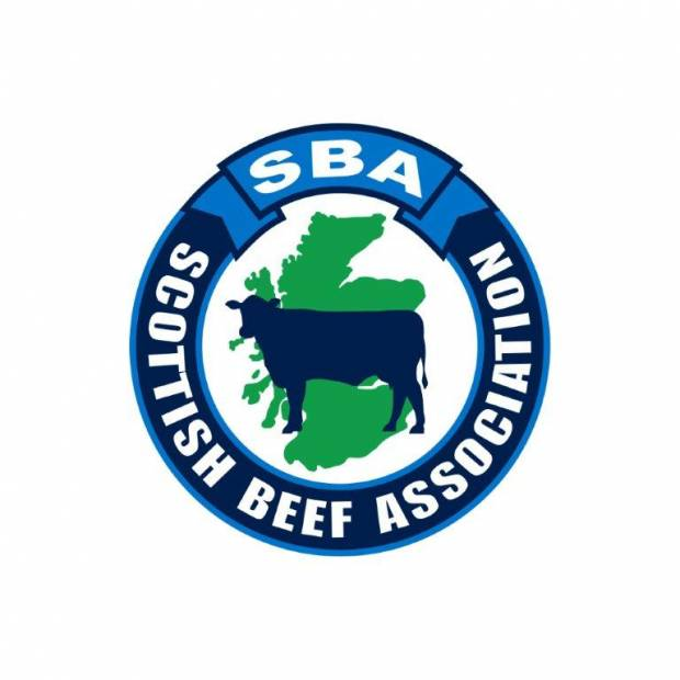 SBA Warn of Real Financial Hardship faced by Beef Producers