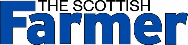 The Scottish Farmer - NI Pedigree Sales Solution?