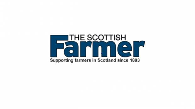 Scottish Farmer - National Beef Association adds experts to its board