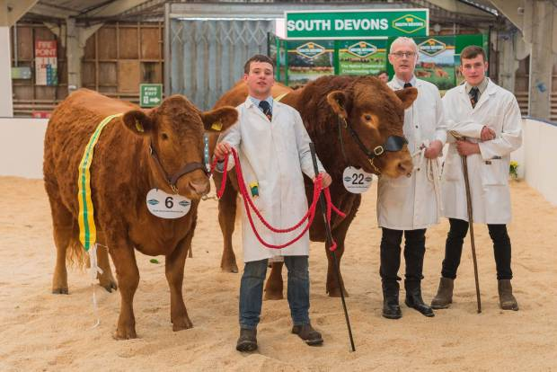 South Devon Performance Championships Held at Beef Expo 17