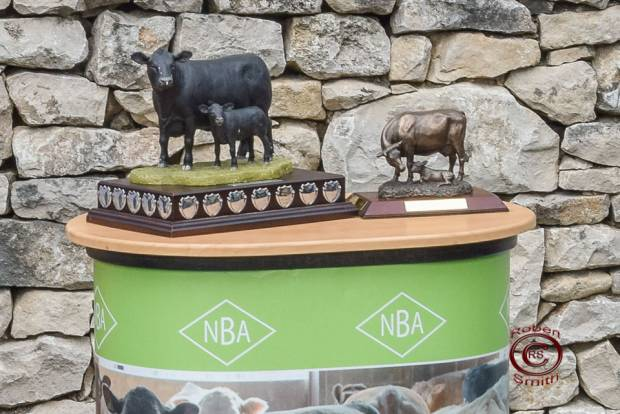NBA Beef Expo 2016 - Future Farmer Awards and Young Farmers
