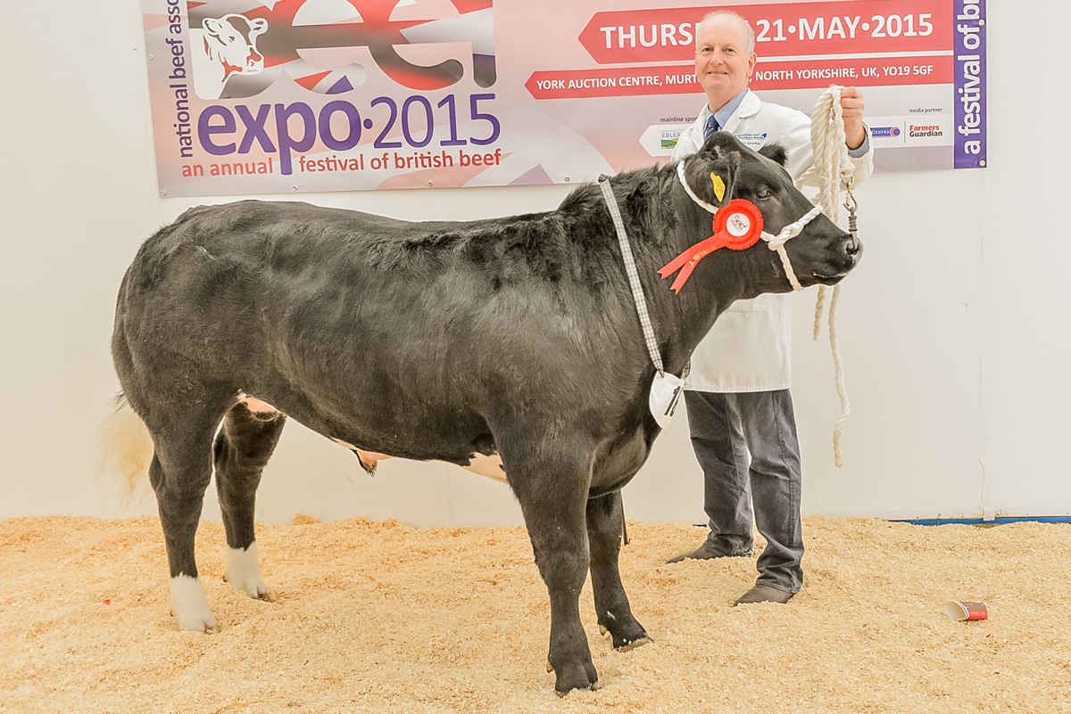 First prize Auctioneer show challenge NBA Beef Expo 2015 Trevor Simpson Hexham Auction Mart