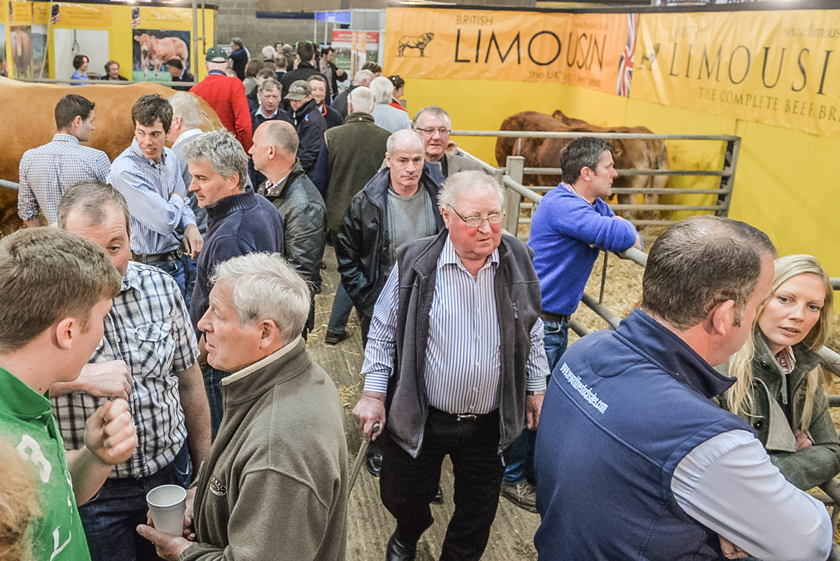 Limousin Cattle Society