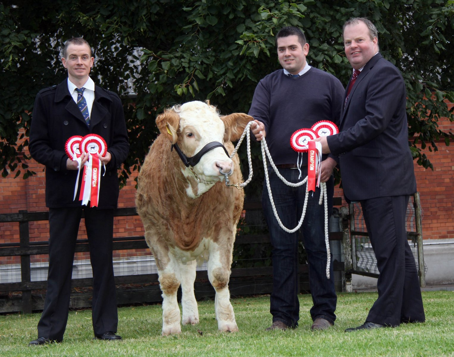 All set for the Pedigree Calf Fair @ Beef NI Expo are Richard Rodgers, chairman, NI Simmental Cattle Breeders' Club, with Richard McKeown representing the Castlemount Herd, and event chairman David Connolly.