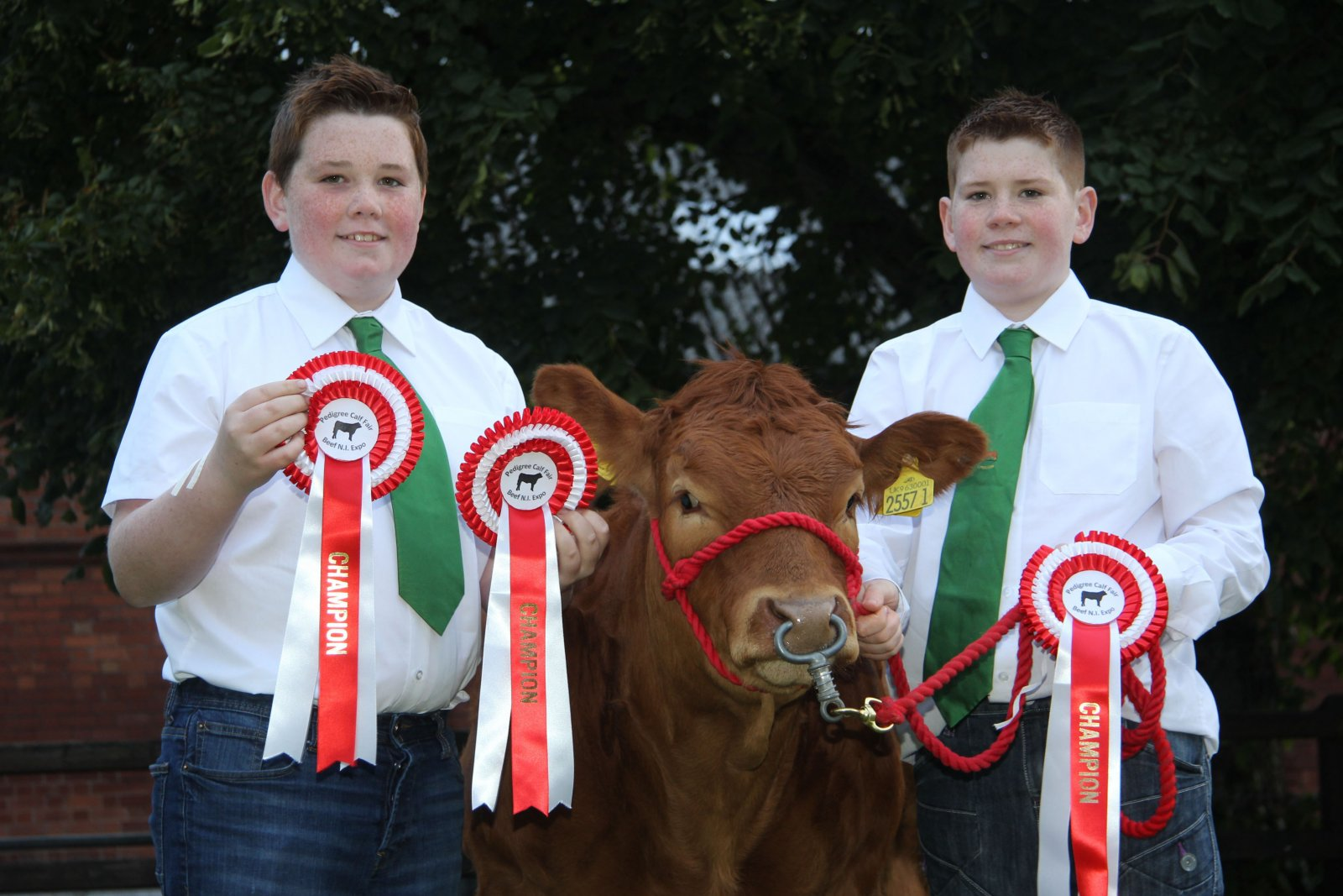 Looking forward to the Pedigree Calf Fair @ Beef NI Expo are Michael and Jack Loughran, Cookstown, with their Limousin calf Millgate Lucy.